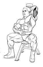 Базовые мужские упражнения