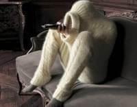 Не замерзнуть и в самый жестокий холод