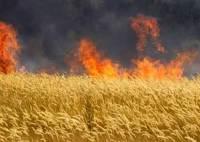 к чему снится пожар в поле