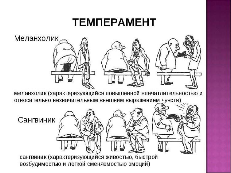 темпераменты